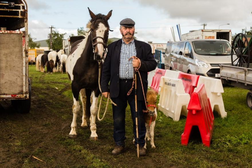 Horse Fair 4
